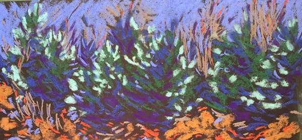 pastel by Carolyn #4